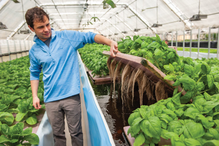 Aquaculture Goes Commercial in Shelby County