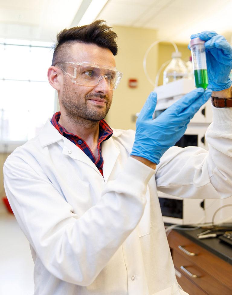 UA Analyzes Hemp Plant